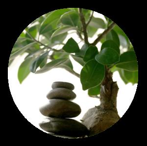 Kurse/Workshops/Seminare zu Meditation und Achtsamkeit, Klangmeditation, Achtsamkeit für Kinder, Achtsamkeit und Natur, bewegte Meditation, Hannover+Region